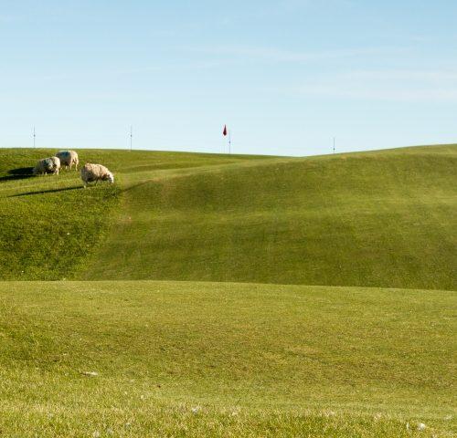 Hole 16 Brora Golf Club
